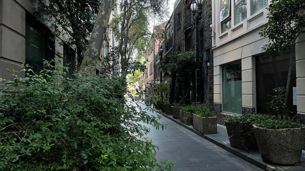 Melbourne City CBD residents walks